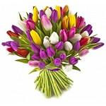 Шар из тюльпанов